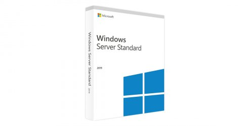 Microsoft Windows Server Standard 2019 OLP 2Lic 9EM-00653
