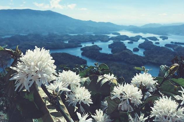 Tour Đắk Nông 2N1Đ - Hồ Tà Đùng - Nghỉ dưỡng 03 sao